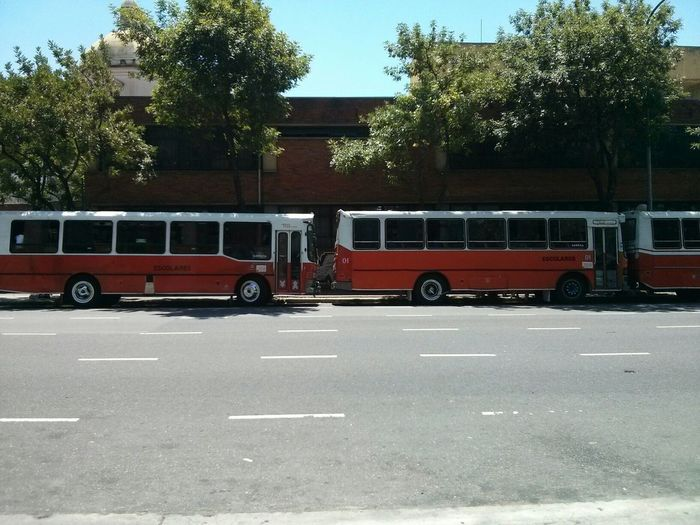 Buses of Buenos Aires. · Argentina Capitals  Urban Landscape City Life Transportation Public Transport Red And White Heat Concrete