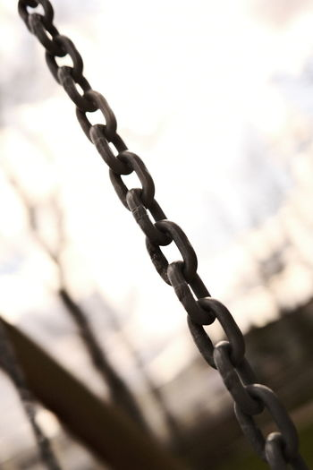 Close-up of chain link fence