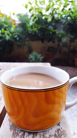 Drink Food And Drink Tea Cup Refreshment Tea - Hot Drink Cup No People Close-up Green Tea Freshness Water Heat - Temperature Healthy Eating Herbal Tea Japanese Tea Cup Food Day Ready-to-eat Indoors  Mint Tea