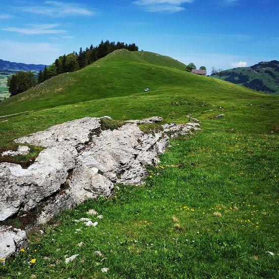 Äscher Alpstein Alpstein Alpes Appenzell Mountains Mountain_collection Swiss Switzerland Heidiinheaven Heidiland