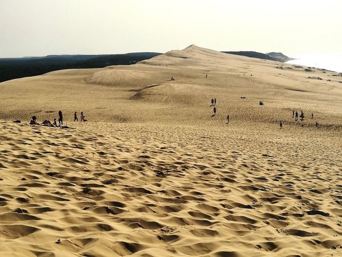 Immensité Sand Sand Dune Nature Day Sea Landscape Beach Outdoors
