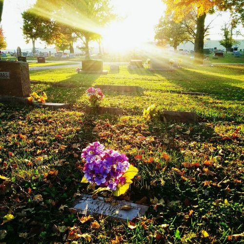 Cemetery Sunset Sunbeams Graveyard Creative Light And Shadow