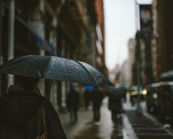 I've seen a little too much rain this year, but at least I was able to snap a lot of moody umbrella photos. Rain Rainy Season Wet New York City Street Focus On Foreground Real People Outdoors City Nature Architecture Umbrella Umbrellas The Portraitist - 2017 EyeEm Awards Nikonphotographer The Photojournalist - 2017 EyeEm Awards Eye Em Vision EyeEm Best Shots EyeEmBestPics EyeEmNewHere EyeEm Diversity Nikon The Street Photographer - 2017 EyeEm Awards The Great Outdoors - 2017 EyeEm Awards The Architect - 2017 EyeEm Awards EyeEmNewHere The Street Photographer - 2017 EyeEm Awards
