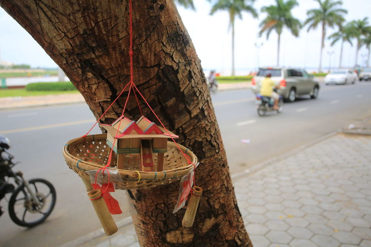 Decoration hanging from tree trunk on sidewalk