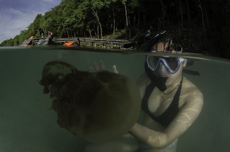 Snorkeling in Jellyfish Lake Adventures Asian  Diving Holiday INDONESIA Nature Snorkeling Swimming Trees Woman Adventure Bikini Bucket List Jellyfish Lake Nature Outdoor Outdoors Palau Real People Swimming Travel Destinations Underwater Underwater Photography Water