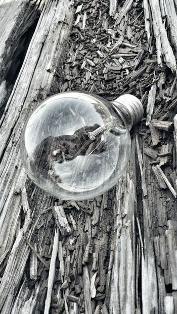 Relaxing Taking Photos Enjoying Life Light Bulb Check This Out Splintered Wood Challenge Yourself Upclose And Personal Black And White Photography Jacksonville, AR Time With My Daughter Simply Beautiful