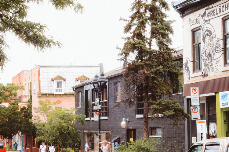 City City Life Cityscape Exterior Light Montréal Nature Architecture Building Exterior Built Structure Canada City Color Day Landscape No People Outdoors Palm Tree Street Streetphotography Tree
