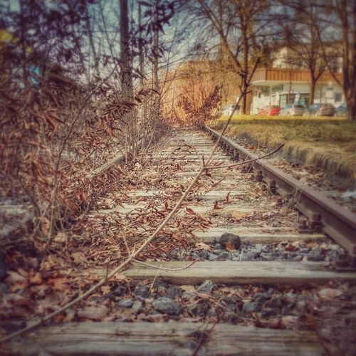 Ex-Linie 16 Railroad Track Walking Around München No People Abandonedplaces