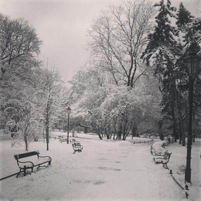 Idę na egzamin. Failure  Exam Najgorzej Winter snow gorzejniżwsztokholmie