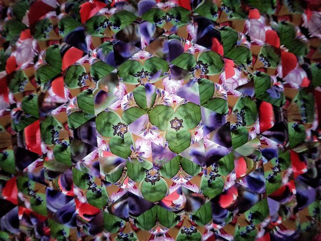 Textured  Backgrounds Abstract Backgrounds Pattern Pattern, Texture, Shape And Form Geometric Shape Kaleidoscope Kaleidoscope Effects Multi Colored Full Frame High Angle View Close-up Hexagon Natural Pattern Colorful