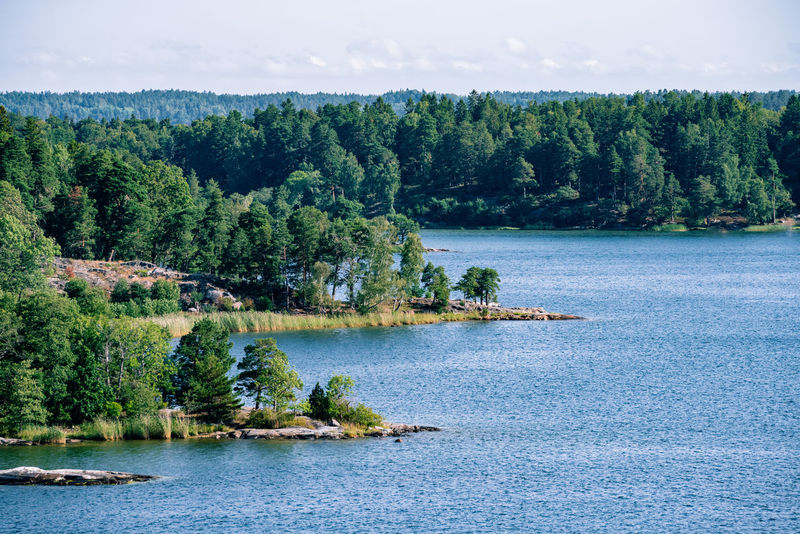 Scenery of tree overgrown skerries and water close to Stockholm Blue Archipelago Baltic Sea Freshness Nature Swedish Nature Tranquility Beauty In Nature Clean Day Forest Green Color Growth Landscape No People Outdoors River Scenics Sea Skerry Skerry Landscape Sky Tranquil Scene Water Waterfront