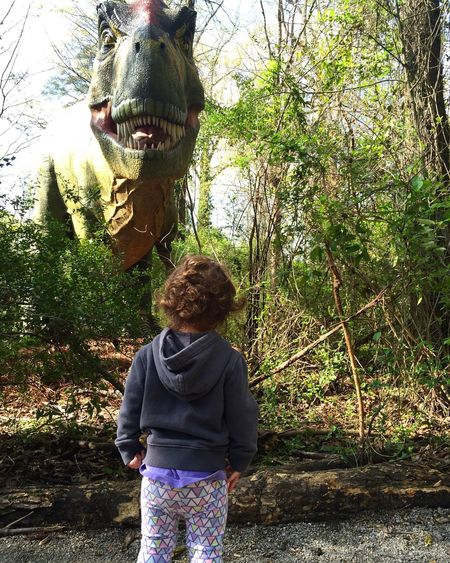 Dinosaur Tyrannosaurusrex Tyrannosaurus Rex No Fear No Fears Birmingham, AL Birminghamzoo