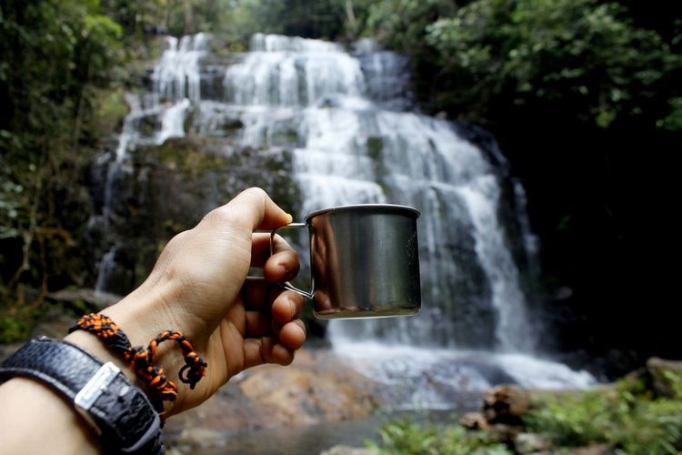 Cropped hand holding cup against waterfall in forest