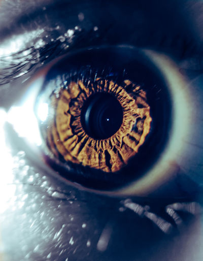 Body Part Close-up Extreme Close-up Eye Eyeball Eyelid Eyesight Human Body Part Human Eye Iris - Eye Macro One Person Pupil Real People Selective Focus Sensory Perception Unrecognizable Person