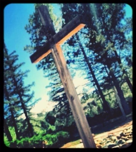 Jesus Cross Nature_collection Scandal Of Grace