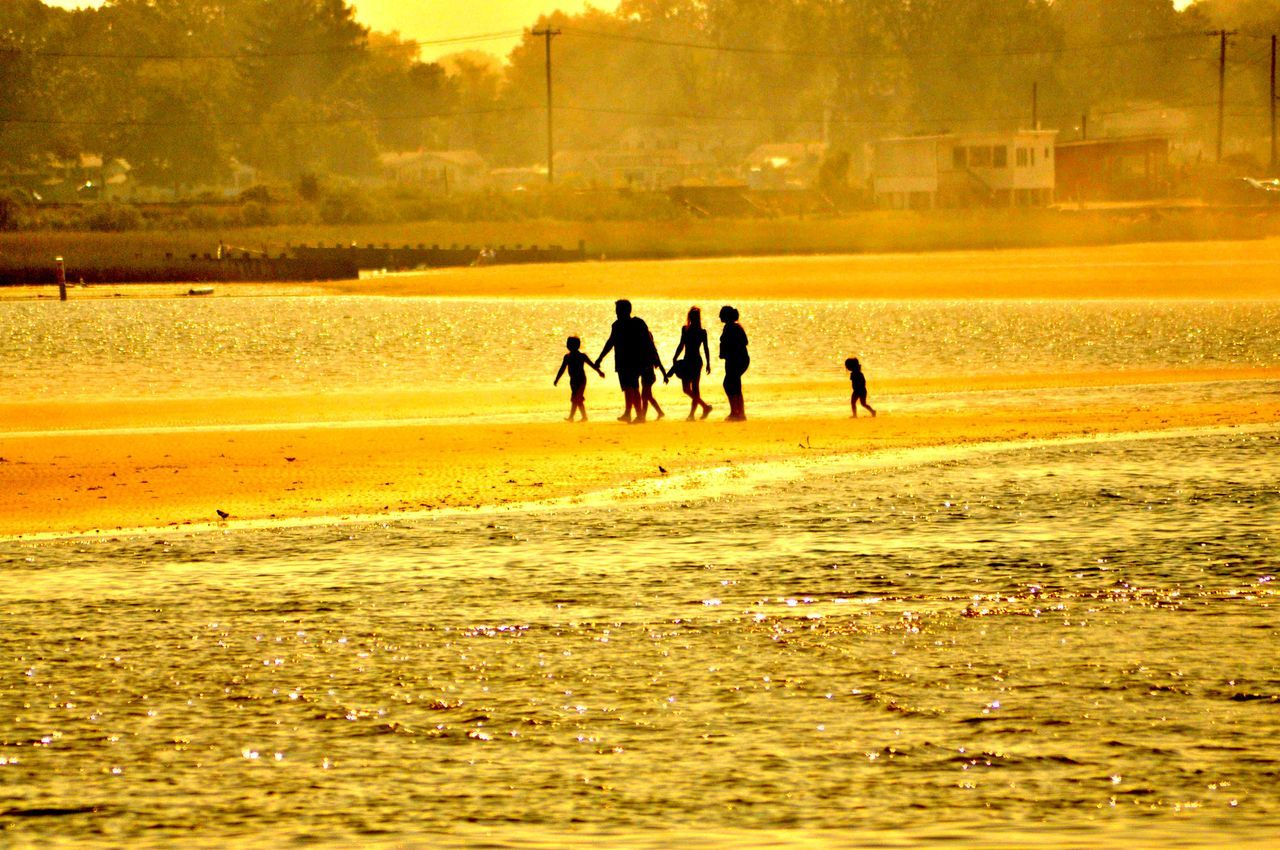 Silhouette Family Walking On Shore At Beach