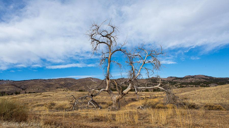 Taking Pics Landscape Travel Photography
