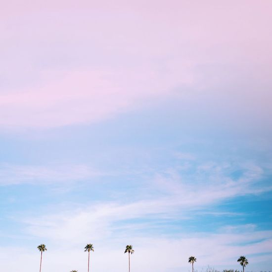 Showcase March Travel Photography Traveling Surreal Daydream Pastel Colors California Palm Trees Wanderlust Palm Springs Fine Art Photography