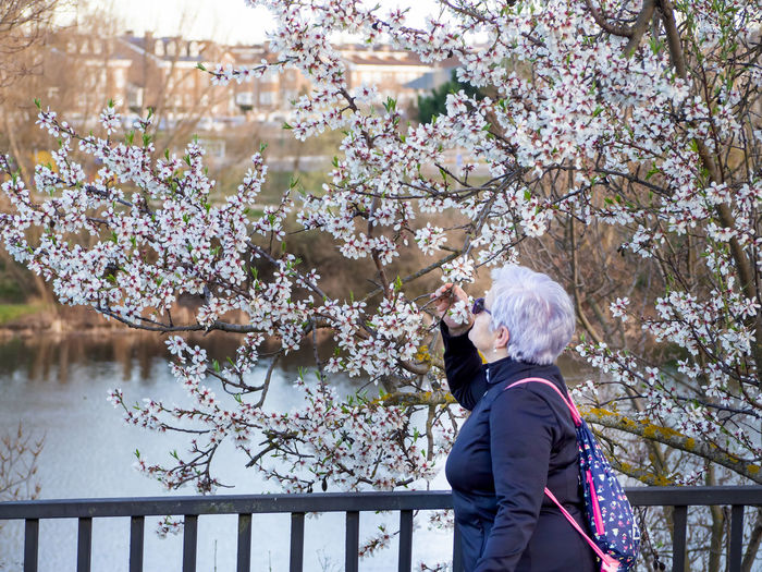 Side view of woman holding flowering tree branches on footbridge