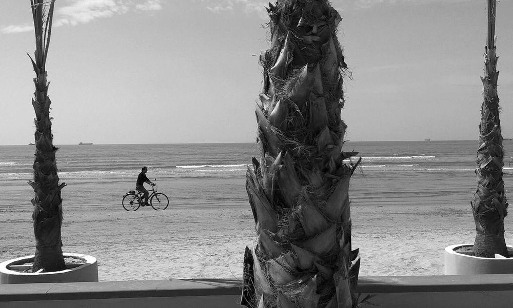 Out of season nr 2 . Blackandwhite Monochrome Seaside Streetphotography Urban Geometry Bicycle Beach Mobilephotography Odetomycity Myalbania