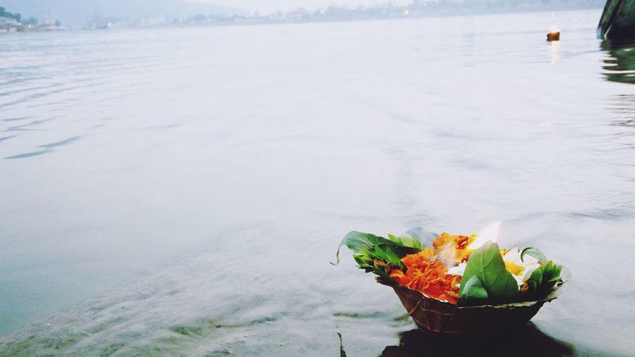 Offerings in ganges river