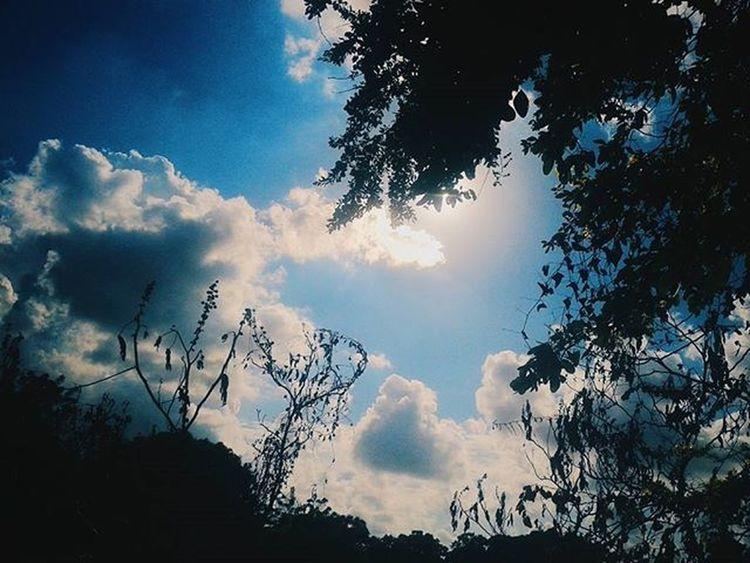 Encontremos esa luz en el universo ahora :) VSCO Vscocam Vscogrid Clouds Cloudy Instamexico Mexico Bluesky Paradaise Photograh