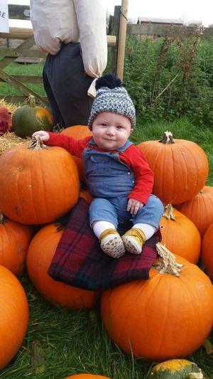 Halloween Pumpkin Portrait Full Length Childhood Autumn Smiling Cute Front View Vegetable