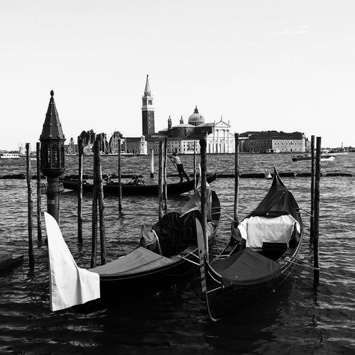Gondolas In Grand Canal With Santa Maria Della Salute In Background In Venice