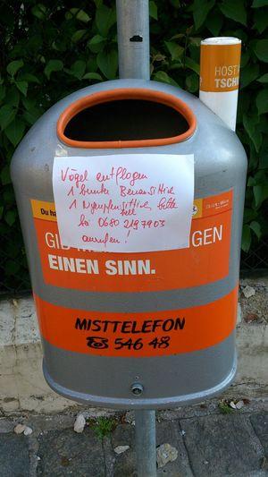 Wanted Entflogen Mai 2014 Mülleimer Der Stadt Wien