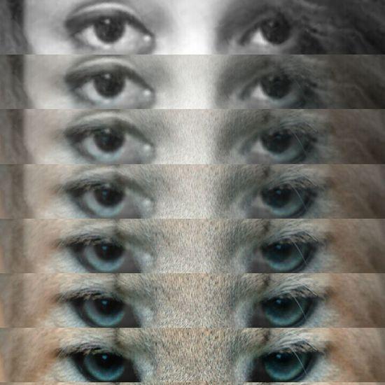 Eye(: Amazing *-*