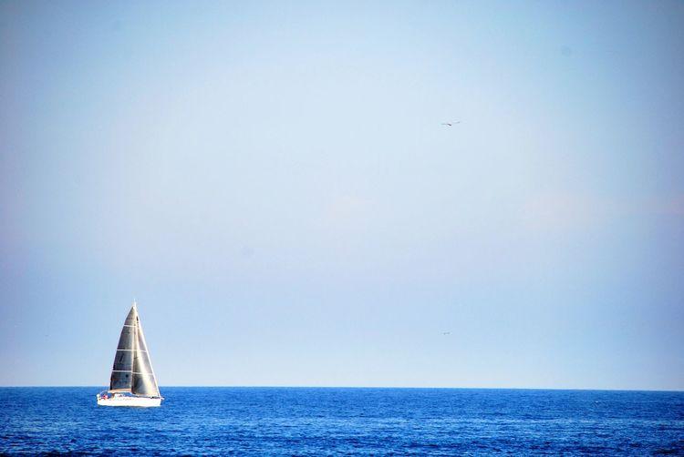 Taking Photos Going Sailing