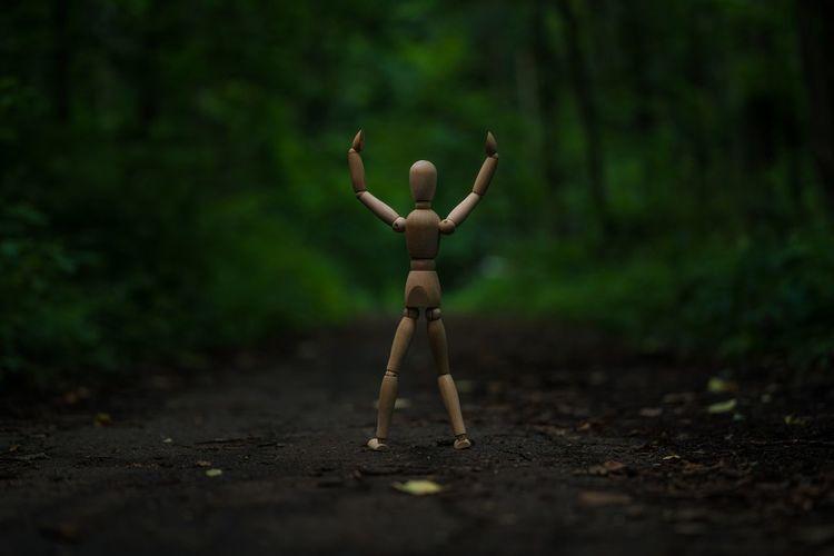 Close-up on figurine on field