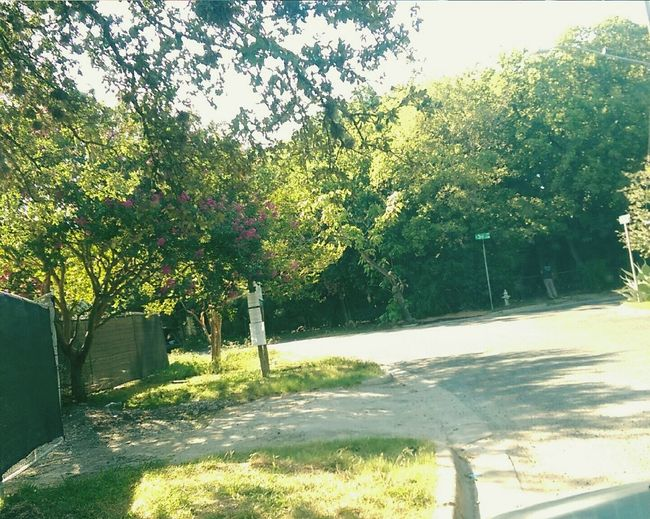 The Old Neighborhood Memories Sad Gentrification
