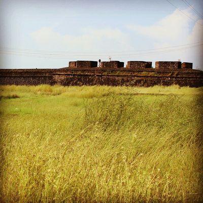 The fields! Urban India Fort Allgreen