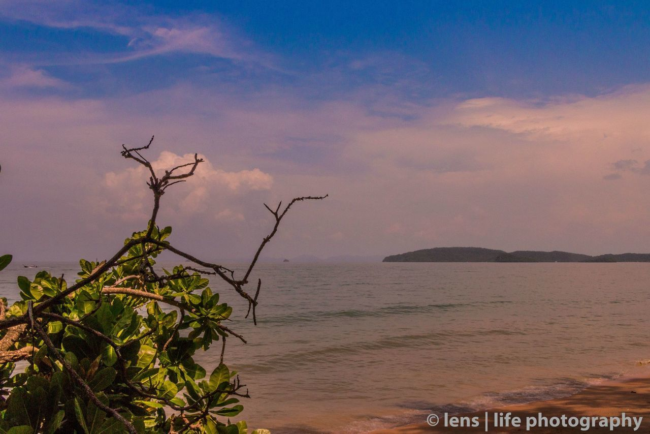 sea, nature, beauty in nature, water, scenics, sky, outdoors, horizon over water, beach, tranquility, tranquil scene, no people, sand, sunset, day, tree