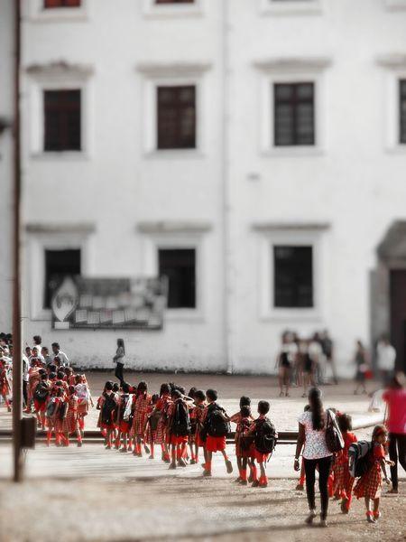 Kids Photography Schoolkids Having Fun Schoolpicnic Tiltshift