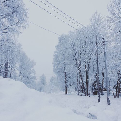 Lines trough snow Leading Lines Perspective Winter Snow Cold Temperature Weather Nature Cable Beauty In Nature White Color Tree Outdoors Tranquility Scenics Tranquil Scene Landscape Shades Of Winter