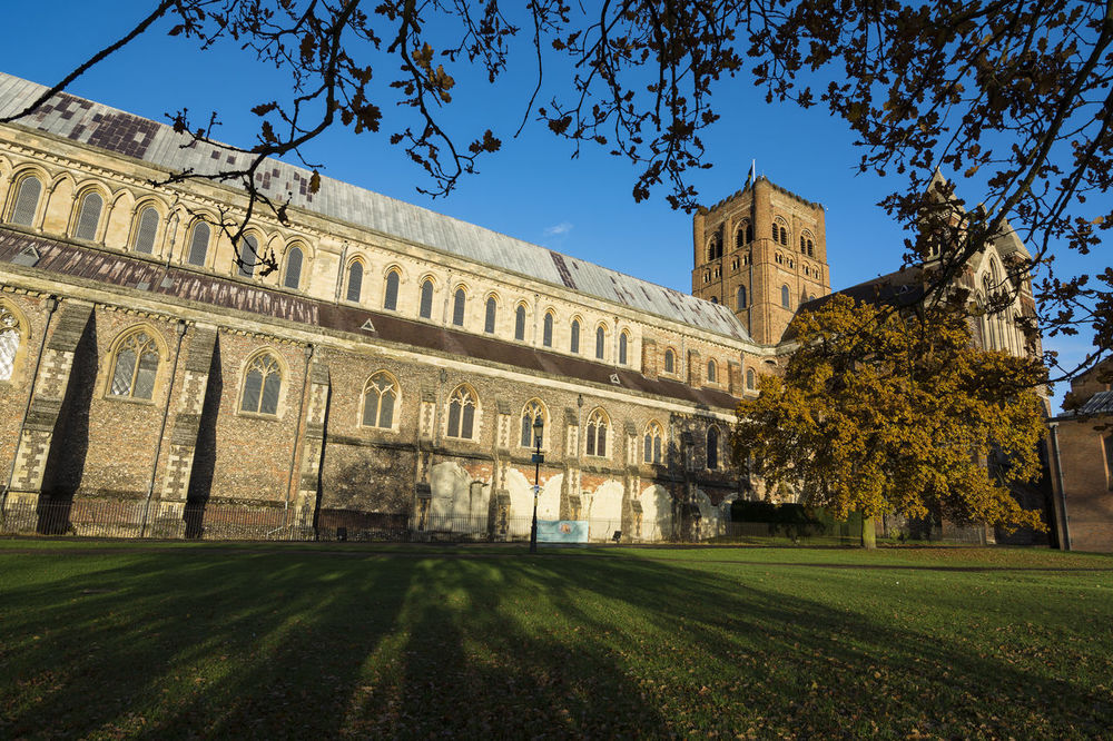 St Albans cathedral and grounds in golden sunlight Architecture Building Exterior Church England Gothic Gothic Architecture Grass Hertfordshire Perspective Shadow St Albans St Albans Cathedral