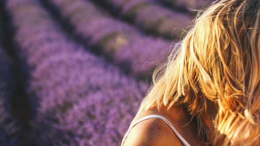 Puesta de sol sobre campos de lavanda Hair Light On Hair Evening Light Yellow And Purple EyeEm Gallery Check This Out Malephotographerofthemonth Travel Flower Blond Hair Rural Scene Women Agriculture Headshot Young Women Summer Girls Lavender Blooming Aromatherapy Purple In Bloom Lavender Colored Flower Head Perfume Sprayer Perfume