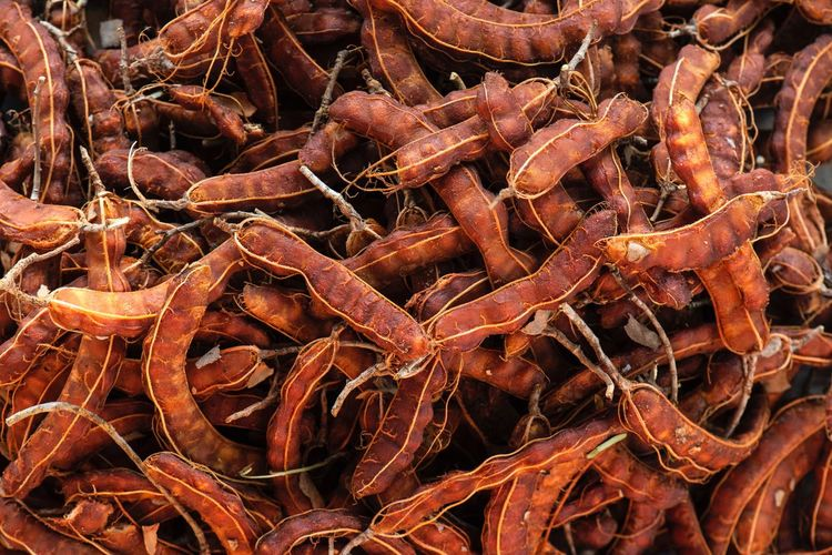 tamarind dried fruits Fruits Dried Tamarind Full Frame Backgrounds Abundance No People Food Food And Drink Large Group Of Objects Nature Freshness Orange Color Still Life Fishing Net Brown High Angle View