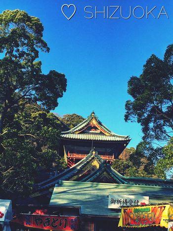 Hello World Relaxing Enjoying Life Japan Beautiful Nature Trees Shizuoka-shi