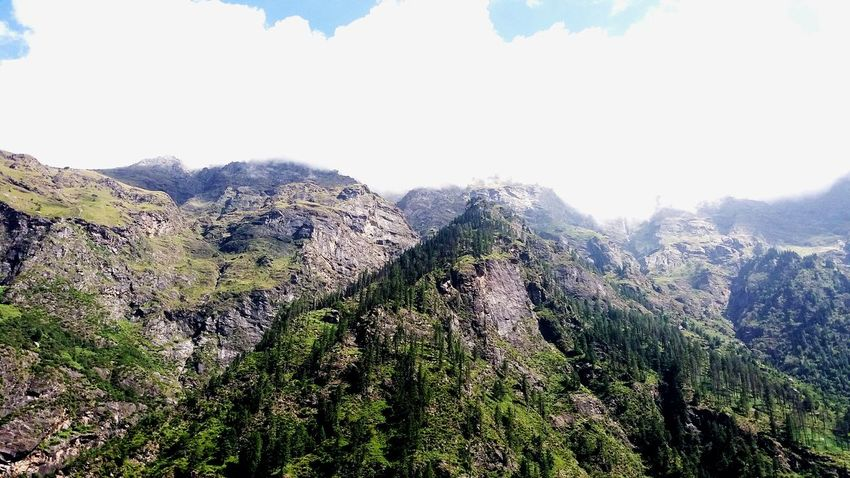 Clouds over the mountains Nature Growth Sunlight Beauty In Nature Plant Tranquil Scene Sky Landscape Outdoors Mountain Tree Summer Freshness Day No People Cloud - Sky Low Angle View Scenics Flower Sun Kullu Trekking Green Green Green!  Freshness Beauty In Nature
