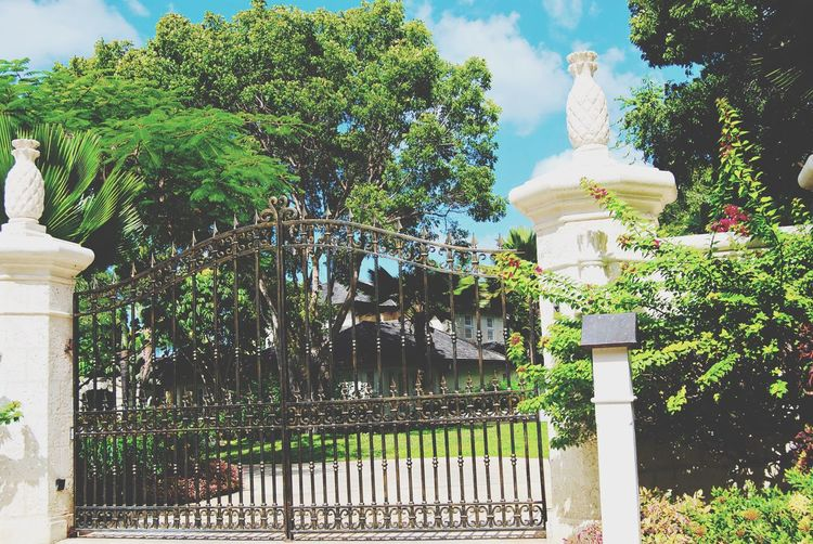 Vacations House Built Structure Statue Architecture Outdoors Green Luxury Building Buildings