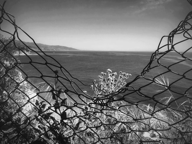 Nature Sea Beauty In Nature Scenics Outdoors Blackandwhite Shootermag Fine Art Photography Bw_collection EyeEm Best Shots California Malibu Resist