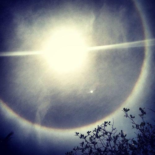 Amazing Rainbowaroundsun