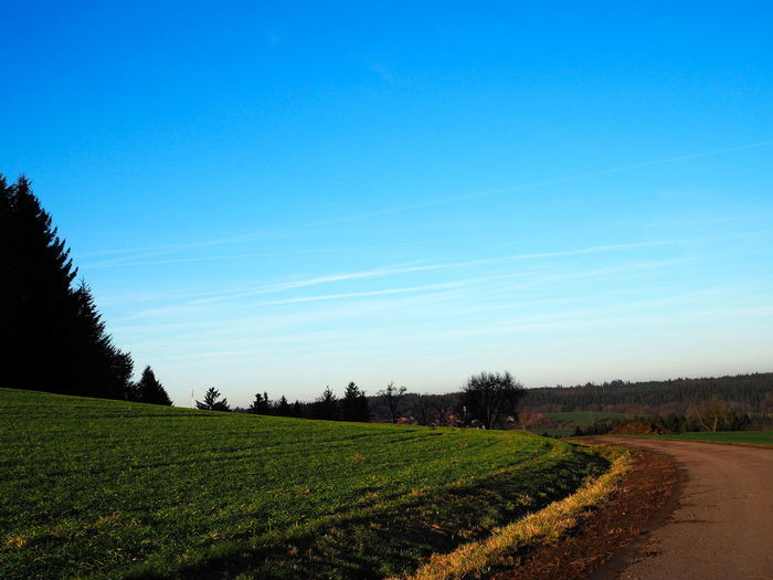 blue sky at a way Baden-Württemberg  Blue Color Green Color South Agriculture Beauty In Nature Blue Blue Sky Bluesky Clear Sky Day Field Germany Grass Growth Landscape Nature No People Outdoors Rural Scene Scenics Sky Tranquil Scene Tranquility Tree