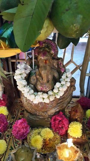 NoEdits  Hindu Festival Latepost