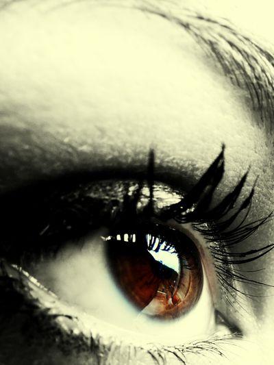 Eyes Eye For Photography Eyelashes