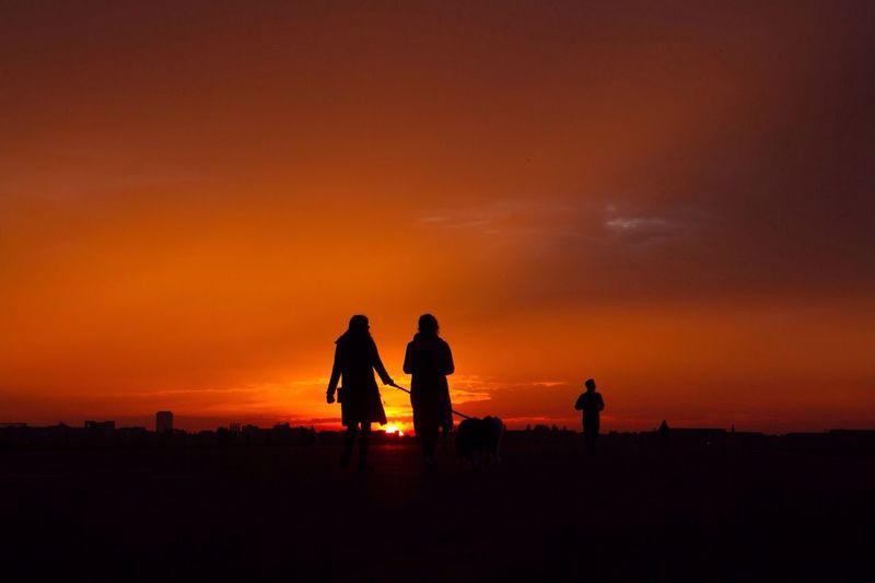 People walking dog at sunset