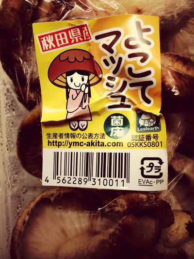 Exquisite Japan Mascot Branding Cute